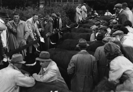 cutcombe market in the late 1940s courtesy Roger Webber
