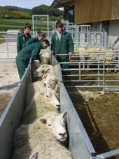students on the land based course at the west somerset community college