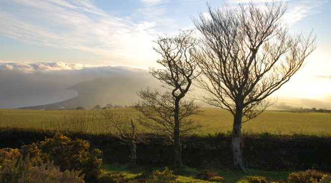 LEAFLETS IN CHINESE FOR EXMOOR