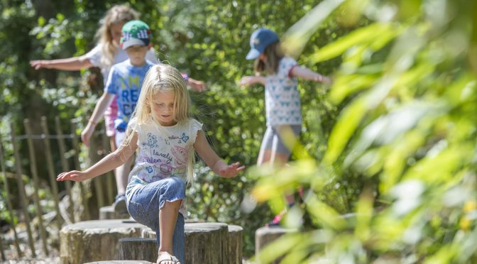 SUMMER OF ADVENTURE AT RHS ROSEMOOR
