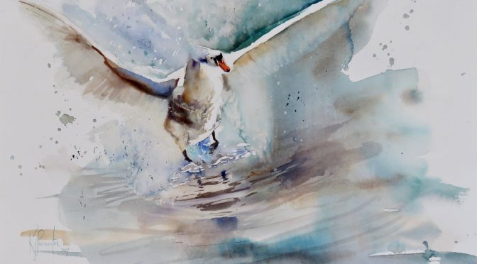 ACEARTS AND SOMERSET WILDLIFE TRUST LAUNCH OPEN WILDLIFE ART EXHIBITION